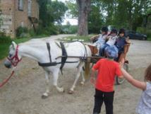 Initiation au poney classe de MS Juin 2012