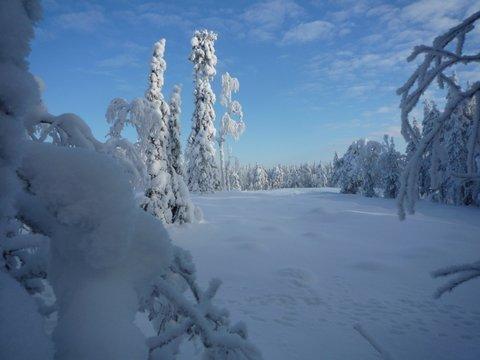 Les 10 ans de l'échange finlandais!